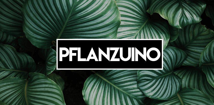 pflanzuino-thumb